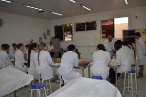 Anatomia Humana I
